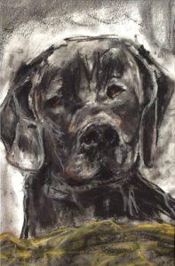 Sort hund er titlen på tegning med pastelkridt