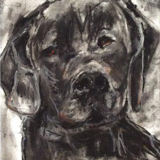 Sort hund er en tegning med pastelkridt på papir