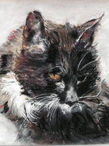 Katten Gustav 19 år er titlen på tegning med pastelkridt på papir