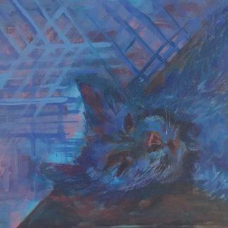 Titlen er blå liggende kat med kattetern